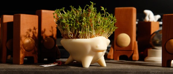 cress-critter-first-seeds